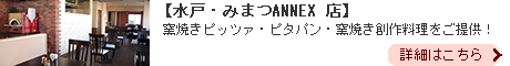 tin-pan-alley みまつANNEX店